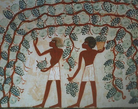 Вина египетских Рамсесов