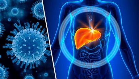 Лечение гепатитаB
