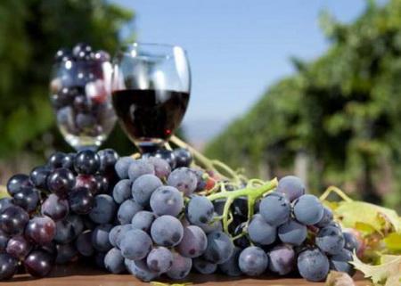 Наливка из винограда